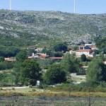 aracima35